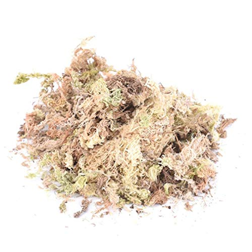 Berrywho 1pack 12l Sphagnum Dry Moss Garden Moisturizing Ernährung Organische Dünger für OrchideePhalaenopsis Musgo Sphagnum