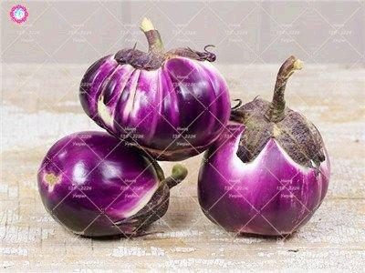 100pcs rond noir Aubergine Graines Heirloom légumes bio semences plantes non OGM pour le jardin bon goût riche en vitamines 2