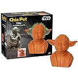 Maceta Decorativa de cerámica Chia Pet