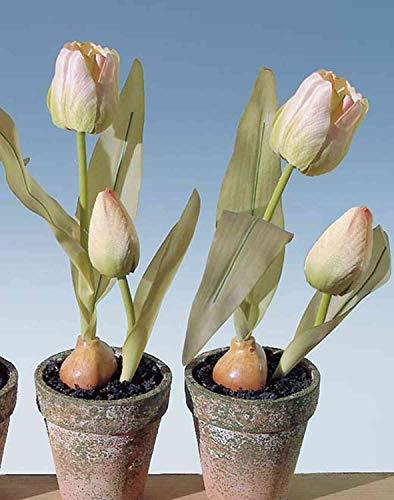 artplants.de Kunsttulpe MYA im Tontopf, Creme-rosa, 25cm - Textilblume/Kunststoff Tulpe - 2