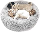Zoom IMG-1 wuudi cuccia per gatti a