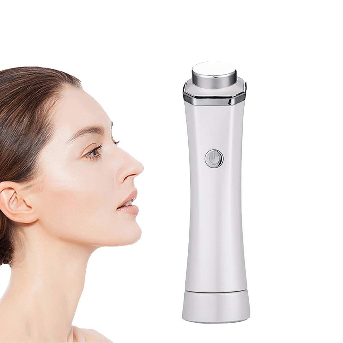 ピカソ葉焼くフェイシャルクリーニングマッサージ、スキンケア美容機器を充電プロフェッショナルUSB、顔のクリーニングリフティングツール