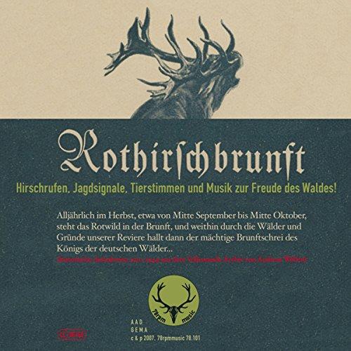 Rothirschbrunft (Hirschrufen, Jagdsignale, Tierstimmen und Musik zur Freude des Waldes!)