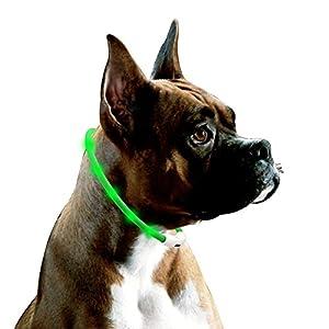 LED Chiens Collier, Réglable Lumineux de Sécurité Collier pour Chien, Rechargeable USB en Silicone Chien Collier , 70cm Peut être Coupé Résistant à l'eau Collier pour Chien Chat