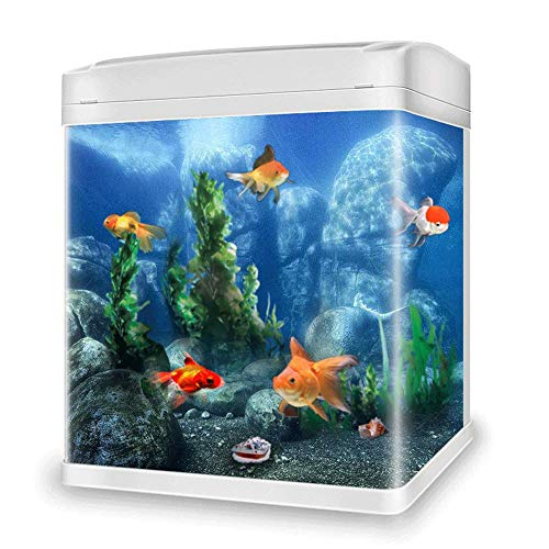 JIANGU Tisch-Aquarium, klein, Glas, für Wohnzimmer und Zuhause