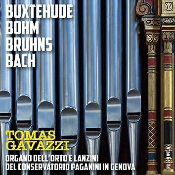 Organ Recital: Buxtehude, Böhm, Bruhns, Bach (Organo dell'Orto e Lanzini del conservatorio Paganini, Genova)