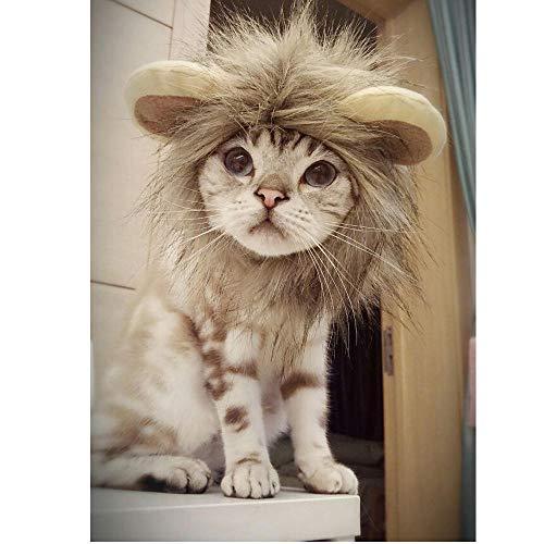 MRQXDP Peluca Sombrero de Perro Peluca de Melena de len para Disfraz de Perro y Gato Mascota Ajustable Lavable Cmodo Fantasa Lion Hair-M
