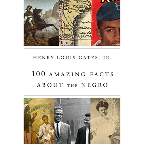 100 Amazing Facts About the Negro audiobook cover art