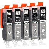 5 Cartucce Per Stampanti con Chip compatibile con Canon CLI-526 (Grigio) per Canon Pixma MG-6150 MG-6200 MG-6250 MG-8150 MG-8200 MG-8240 MG-8250
