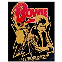デビッドボウイロックミュージックスター-キャンバス絵画壁アートポスター絵の装飾リビングルームの装飾のための絵画キャンバスに印刷50x70cmフレームなし