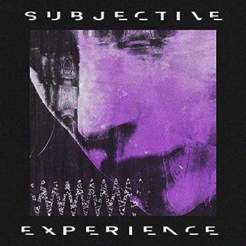 Subjective Experience