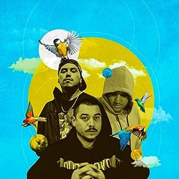 Arriba (feat. Donexprs & Liricistas)