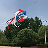ZFLL Cometa 6 m Rainbow windsock Kite Surfing Ripstop Nylon Kite Colgante Conectado Kite Line Kite Tail Deportes al Aire Libre Herramientas de Vuelo, Rojo Azul Blanco