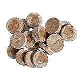 GLOBEAGLE 30mm pellet di torba Jiffy Seed Starting Plugs pallet Seedling suolo Block PoE...