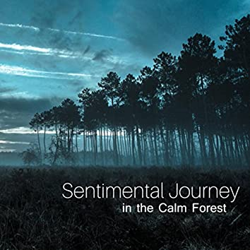Sentimental Journey in the Calm Forest (Contemporary Music for Relaxation, New Age Spa Sounds, Anti Stress Nature Scenes of Australia)
