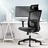 Ergonomic Office Chair,Home Comfort Chairs,High Back Adjustable Home Desk Chair with Lumbar Support,High Back with Breathable Mesh,Thick Seat Cushion,Adjustable Head & Lumbar Support