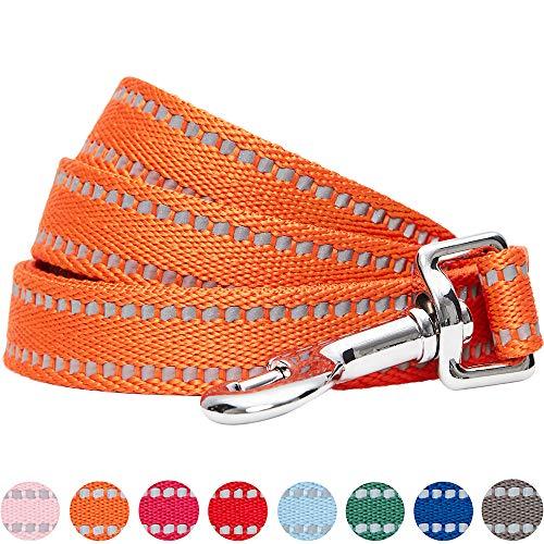 UMI. Essential Stabile, pastellfarbene, reflektierende Hundeleine 150x2cm in Kürbis, Medium, Leinen für Hunde