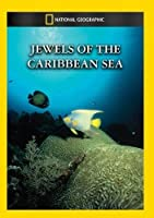Jewels of the Caribbean Sea [DVD] [Import]
