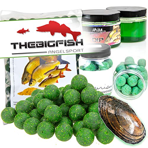 TheBigFish - Angel Boilie Session Set - Boilies, Dip, PopUps - Muschel