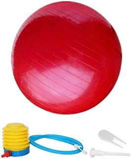 Thickening Total Body Balance Ball Kit - Includes Anti-Burst Stability Exercise Yoga Ball, Workout Program-Red