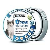 GROTAUS - Collare anti-pulci e zecche per gatti – efficace per gatti di tutte le dimensioni – 12 mesi di prevenzione di pulci e zecche