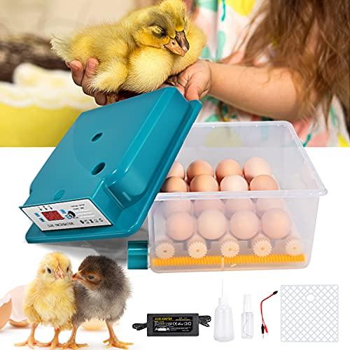 Crtkoiwa Ägginkubator, automatisk omsättning och inkubation med genomskinligt visningsfönster automatisk temperaturkontroll fågelägg incubator för kycklingägg anka ägg olika fågelägg