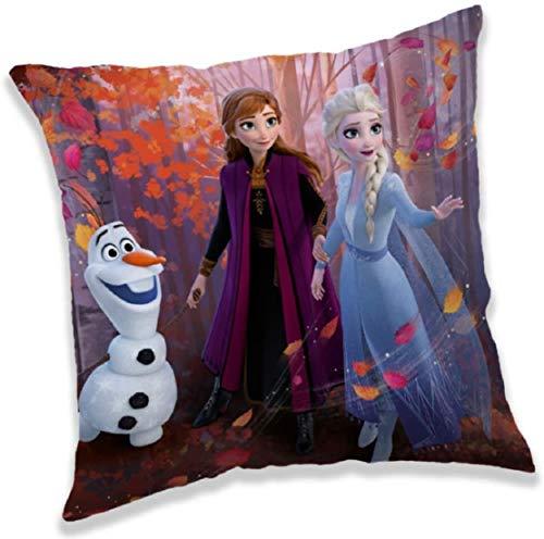 Frozen Coussin décoratif pour enfant La Reine des Neiges Anna & Elsa