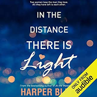 In the Distance There Is Light cover art