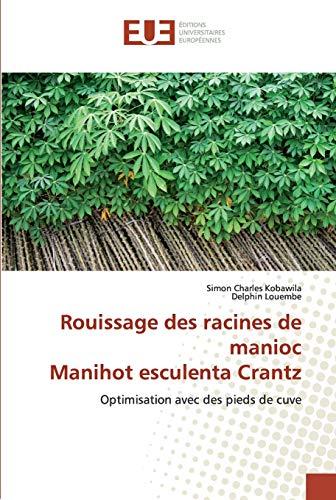 Rouissage des racines de manioc Manihot esculenta Crantz: Optimisation avec des pieds de cuve