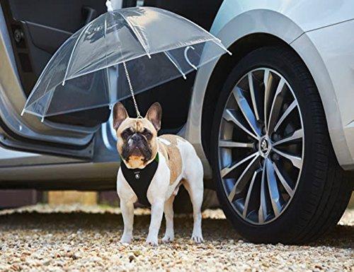 Transparenter Hundeschirm / Pet Umbrella, COUTUDI Haustierregen Zubehör mit Ultra Stark Eingebauter Leine Ideal für Welpen von 20 Zoll Zurück