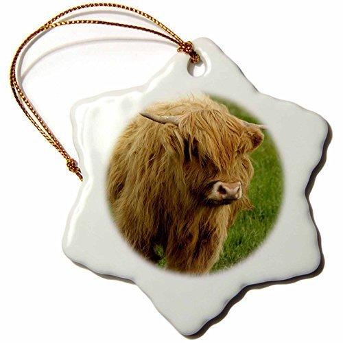 Gloria Yerkes Scotland, Highland Cow, Farm Animal-EU36 CMI0128-Cindy Miller Hopkins-Snowflake Ornament, Porcelain, 3-Inch