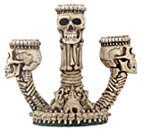 Ossuary Skeleton Triple Votive/Candle Holder