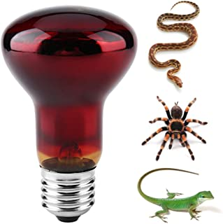 60w Baoblaze Indoor Serpente Tartaruga Lucertola Rettile Riscaldamento Lampada E27 Base di Luce Notturna