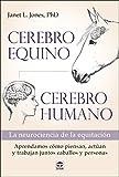 Cerebro equino, cerebro humano: La neurociencia de la equitación