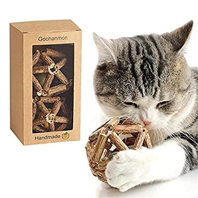 Gochanmon Catnip Toys-2Psc Natural Silvervine Stick Catnip Ball&Bell Ball-Cat Toys for Indoor Cats- Cleaning Teeth Molar Tools Matatabi Cat Chew Toy-Kitten Toys by Gochanmon