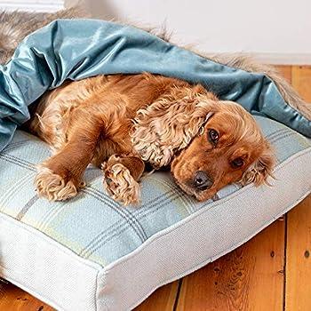 Lords & Labradors Couverture de luxe en velours et fausse fourrure pour animal domestique – Couverture pour chien et chat et 2 tailles (velours bleu canard et fourrure de loup, taille L)