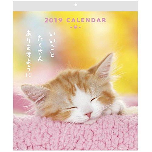 アクティブコーポレーション 2019年 猫 カレンダー 壁掛け CATウォール ACL-02 (2019年 1月始まり)