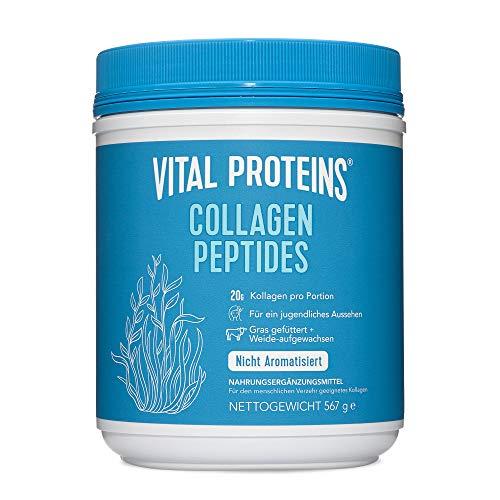 Vital Proteins Kollagen Pulver Collagen Powder Peptide - Gras Gefüttert, Weide-aufgewachsen, Frei von Gluten & Milchproduketen, Nicht Aromatisiert - 567g