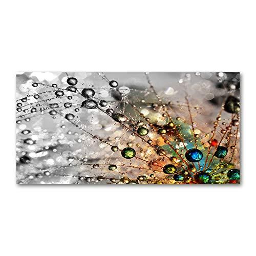Tulup Impresión en Vidrio - 100x50cm - Cuadro Pintura en Vidrio - Cuadro en Vidrio Cristal Impresiones - Flores y Plantas - Multicolor - Semillas de Diente de león