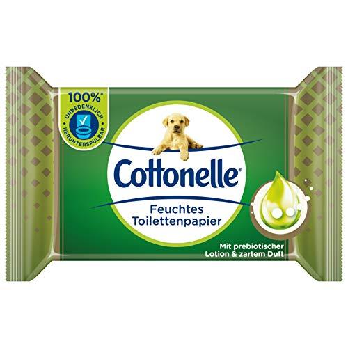 Cottonelle Feuchtes Toilettenpapier, Wohltuende Sauberkeit, Mit prebiotischer Lotion, Biologisch Abbaubar, Plastikfrei, Wiederverschließbar, Einzelpack, 38 Feuchttücher