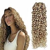Hetto Clip Brasileno Hair 16 pulgada Clip in Extensions fRubio Oscuro Mezclado Rubio Claro Agua Ondulado Clip in Real Human Hair Extensions 7 Pieces 100 Grams Clip in Hair for Short Hair
