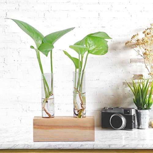 Hydroponiczny wazon na rośliny szklany pojemnik na rośliny z drewnianym stojakiem uchwyt na rurkę do probów dmuchana rurka szklana gorący dom ogród blat