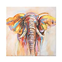 アフリカ色の野生動物のポスターとプリント象ライオンレインボーキャンバス絵画グラフィック寝室家の装飾(40x40cm)フレームレス