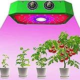 JUJ® COB Plant Light 1000W Spettro Completo Grow Lights Interruttore Veg e Bloom con Kit di Sospensione per Piante da Interno Veg e Fiore