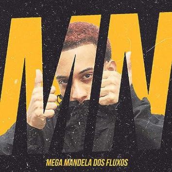 Mega Mandela dos Fluxos (feat. MC GW & DJ V.D.S Mix)
