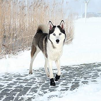 Trixie Bottes de Protection Walker Active (M-L) 2 Pièces