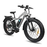 DERUIZ LAVA 26' Bici Elettrica da Mountain, Fat Bike da 750 W, Batteria Rimovibile agli Ioni di Litio da 48V/13Ah, Shimano a 7 velocità, Freni a Disco, Bicicletta Elettrica per Adulto Unisex