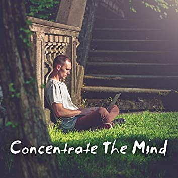 Concentrate The Mind: Music to Help You Focus on Study and Work