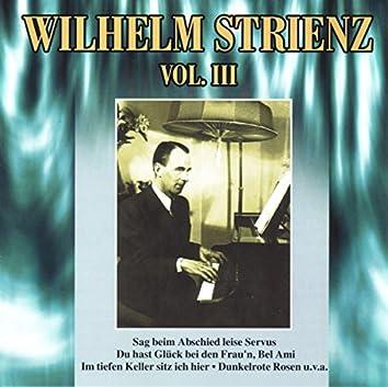 Wilhelm Strienz Vol. III