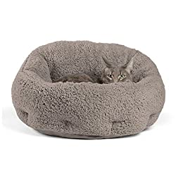 Best Cat Bed for Ukrainian Levkoy Cat